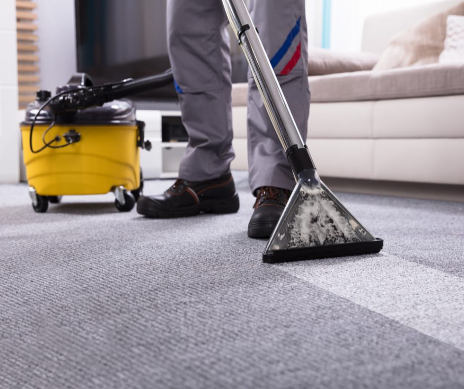 cleaning carpets of pet smells