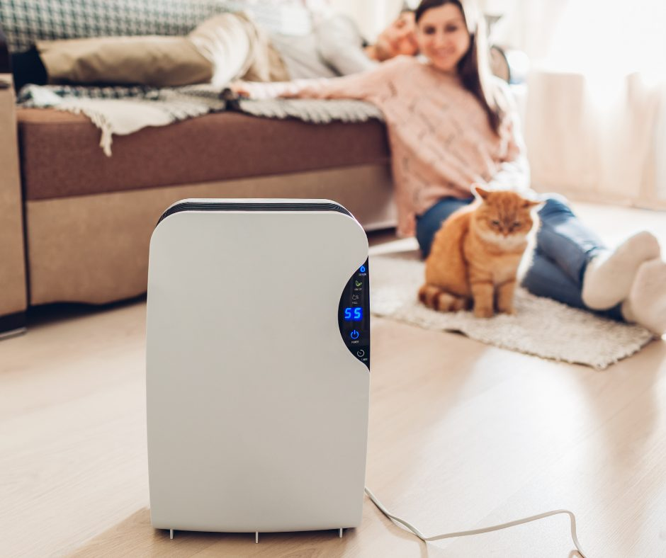 use air purifier with pets